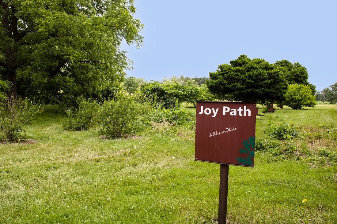 Morton Arboretum Joy Path w I